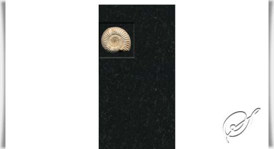 grabstein mit ammonit fossil ammonio. Black Bedroom Furniture Sets. Home Design Ideas