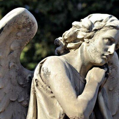 Männlicher Engel mit weich geschwungenen Flügeln