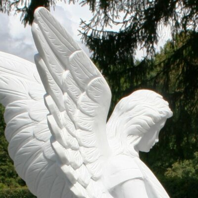 Grabengel mit Detailansicht der filigranen Flügel © Serafinum.de