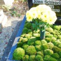 Bodendecker & Vase für frische Blumen © Serafinum.de