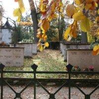 Friedhof Herbst