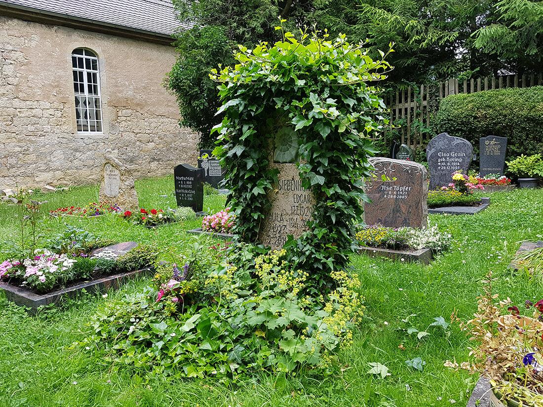 Mit Efeu bewachsenes Grab