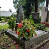 Grabbepflanzung Herbst