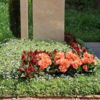 Grabbepflanzung Grab