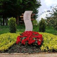 Grab gelb rot bepflanzt