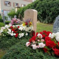 Grabbepflanzung in Rot und Weiß