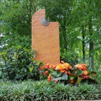Begonien und Grünpflanzen