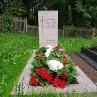 Sommerblumen in Rot und Weiß